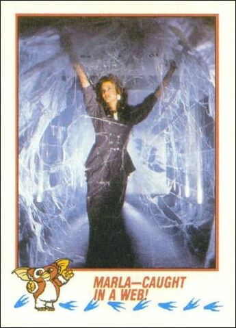 File:Topps Marla-Caught in a Web!.jpg
