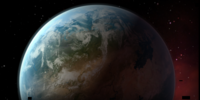 Ecosystem 09