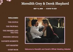 Meredith/DerekWeddingWebsite
