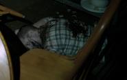 519-Dead safe house guardian