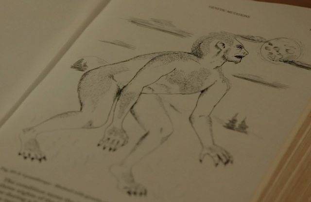 File:514-Lycanthrope book image 2.png