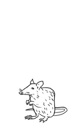 File:Charmed rat.jpeg