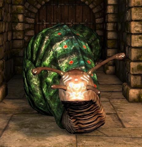File:Giant snail ig.jpg