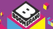 New boomerang log