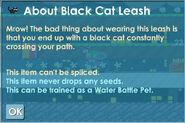 Black Cat Info