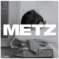 Metz-WetBlanket