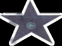 Tony Adventura Star
