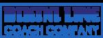 BikiniLine-GTASA-logo