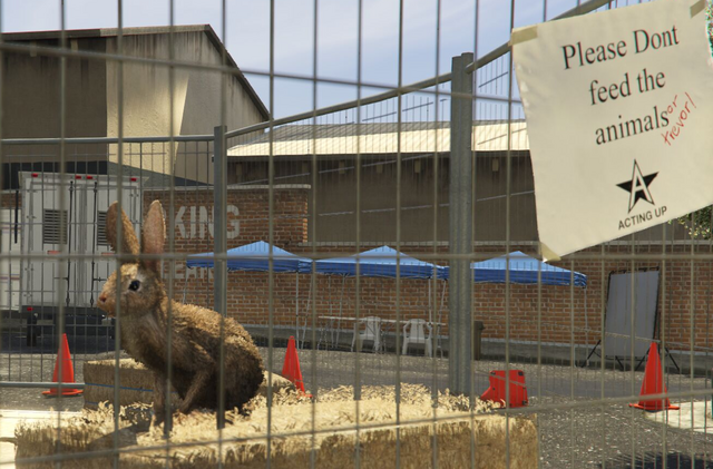 File:Director Mode Actors GTAVpc Animals Rabbit.png