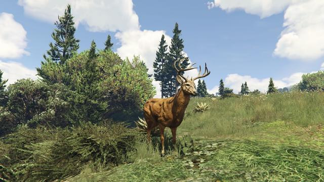 File:Peyote Plants Animals GTAVe Deer.png