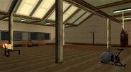 MaddDogg'sCrib-GTASA-gym