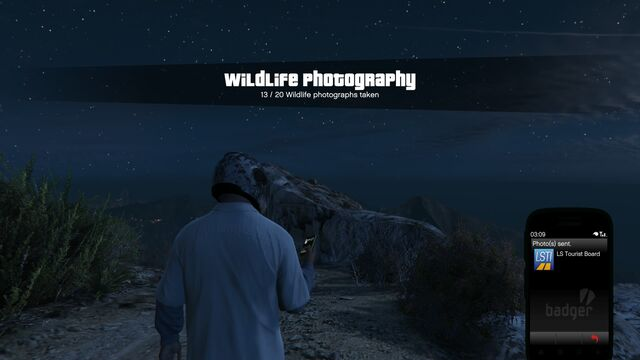 File:Wildlife Photography Challenge GTAVe Mountain Lion.jpg