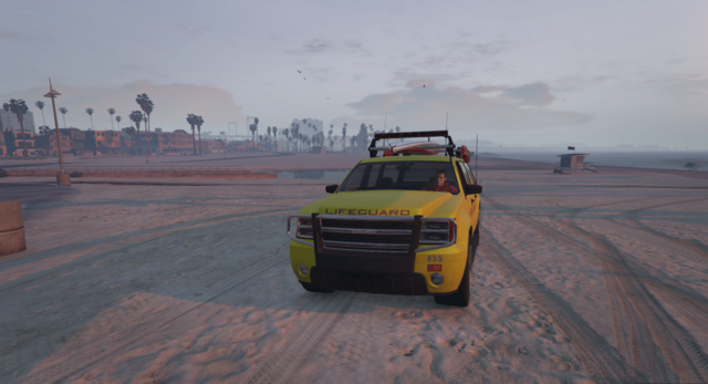File:Lifeguard-GTAV-BeachPatrol.png