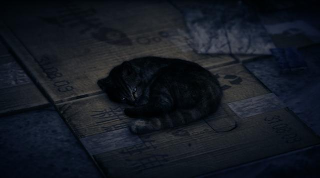 File:Cat-GTAV.jpg