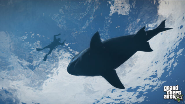 File:Shark-GTAV.jpg