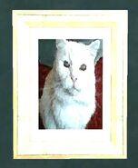 Johnson cat