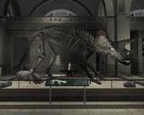 Libertonian-TLAD-FossilTriceratops