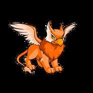 Eyrie orange