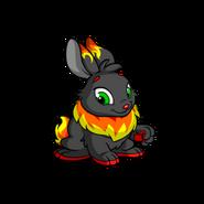 Cybunny fire