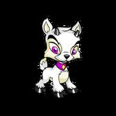 Ixi white