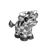 CheckeredKau