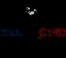 Still & Cynic