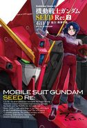 Mobile Suit Gundam SEED Re Vol.2