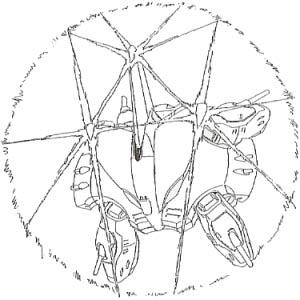 Ymaf-x6bd-reflector