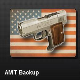AMT Backup