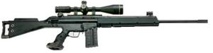 HSG-1