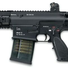 HK417 with 12-inch barrel