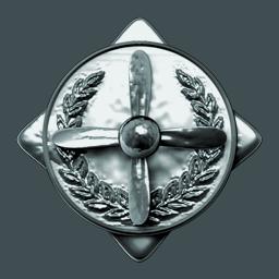 File:Pilot Badge10.png