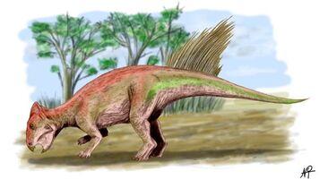 Liaoceratop