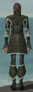 Elementalist Elite Canthan Armor M gray back