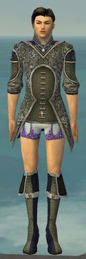 Elementalist Canthan Armor M gray chest feet front
