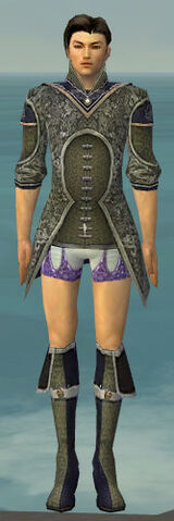 File:Elementalist Canthan Armor M gray chest feet front.jpg