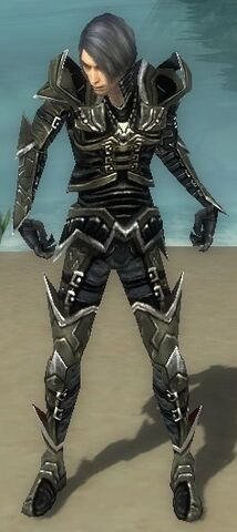 File:Necromancer Elite Profane Armor M gray front.jpg