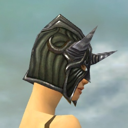 File:Warrior Wyvern Armor F gray head side.jpg