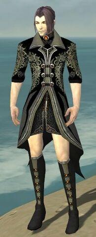File:Elementalist Elite Kurzick Armor M gray chest feet front.jpg