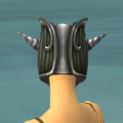 File:Warrior Wyvern Armor F gray head back.jpg