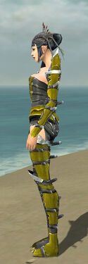 Necromancer Profane Armor F dyed side