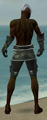 File:Necromancer Fanatic Armor M gray arms legs back.jpg