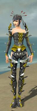 Necromancer Profane Armor F dyed front