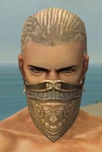 File:Ranger Asuran Armor M gray head front.jpg