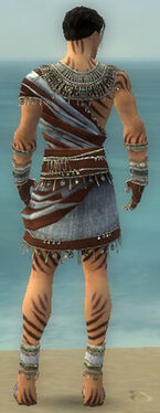 Ritualist Exotic Armor M gray back
