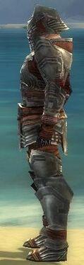 Warrior Asuran Armor M gray side
