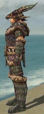 Warrior Charr Hide Armor M gray side alternate