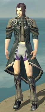 Elementalist Asuran Armor M gray chest feet front