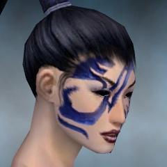 File:Necromancer Luxon Armor F dyed head right.jpg