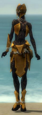 File:Ritualist Kurzick Armor F dyed front.jpg